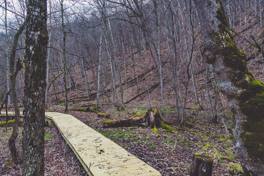 Boardwalk to Cart-In Campsites, Whitewater State Park | Flickr