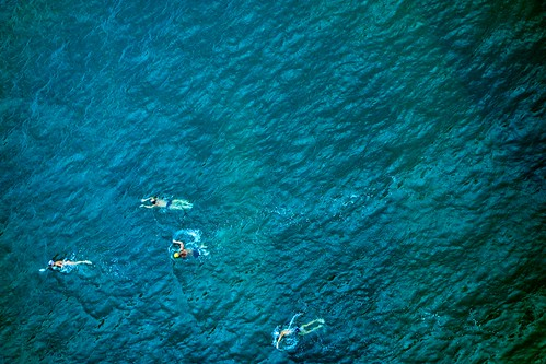 Hong Kong Swimmers 1.   by dagboshoots