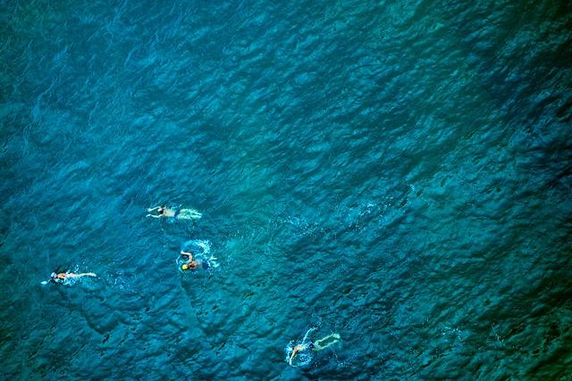 Hong Kong Swimmers 1.