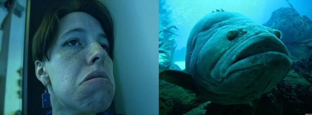 157_365 - Fish Face, The Sequel