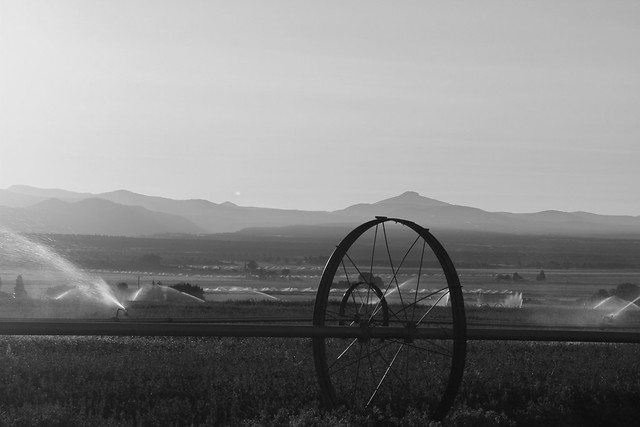 Central Oregon at Sunset