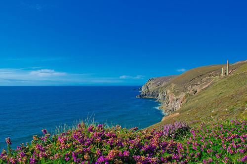 Coast path near Towanroath shaft, St Agnes, Cornwall - 2 | by Thomas Tolkien