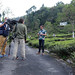 La semaine verte goes with Kevin in India to shoot a short documentary about tea