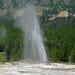 Atomizer Geyser (Cascade Group, Upper Geyser Basin, Yellowstone Hotspot Volcano, nw Wyoming, USA)