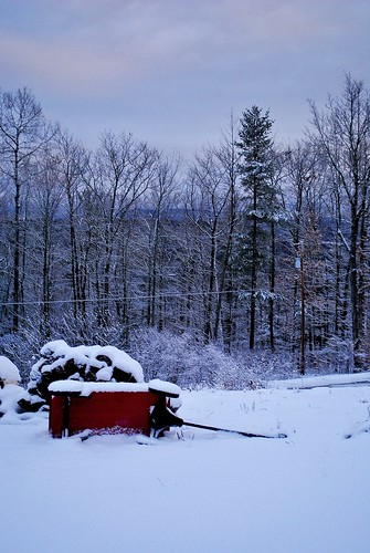 northblenheim usa newyork upstatenewyork landscape radioflyer snow trees outdoors nikon nikond3000