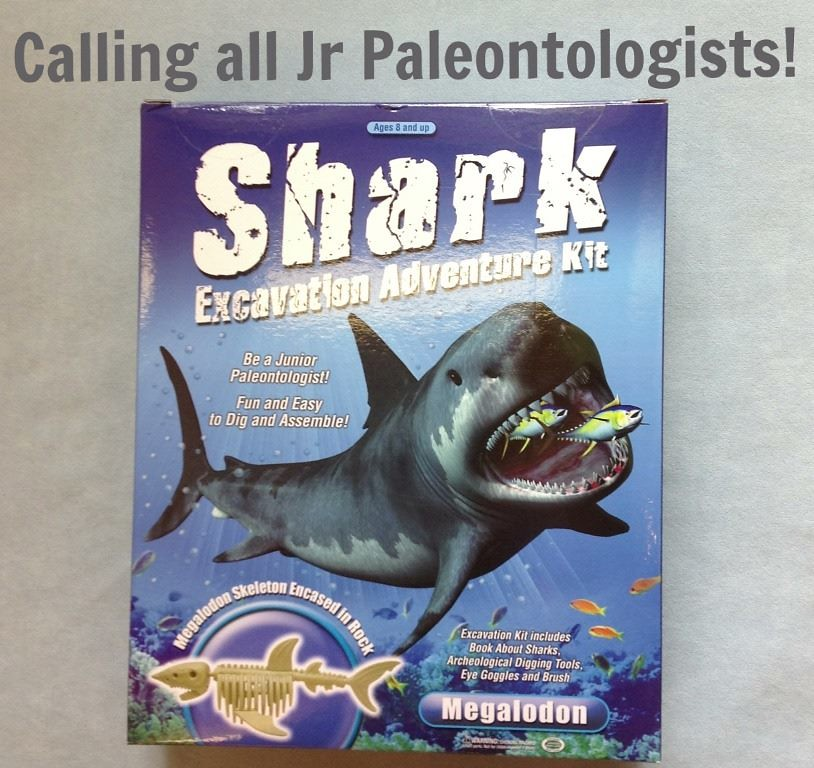 Digging up Megalodon | Your kids are going to love digging t