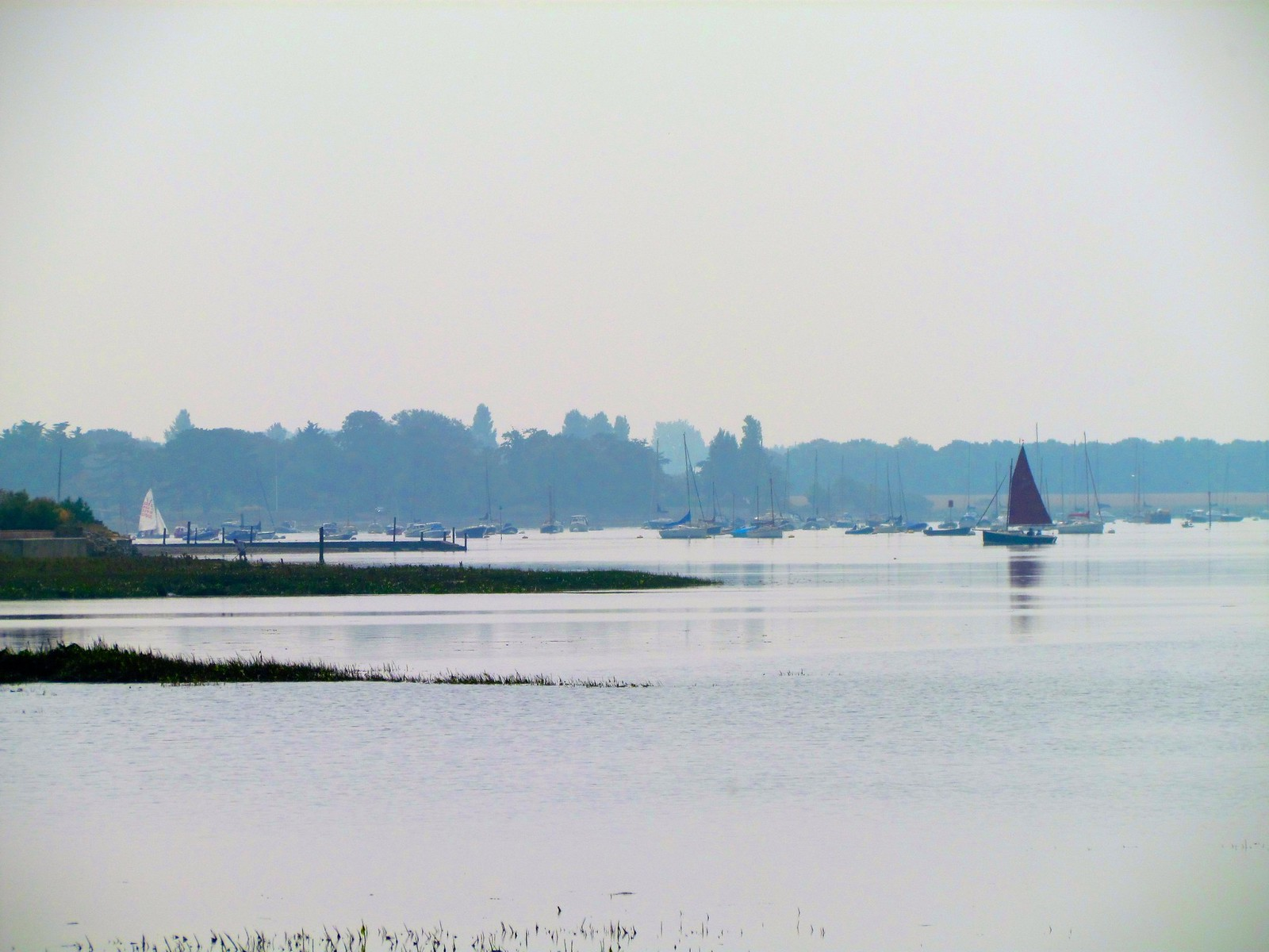 photo from walk Bosham quay