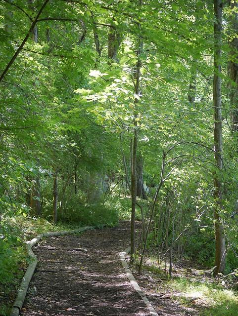 日, 2014-09-14 13:53 - Teatown Lake Reservation