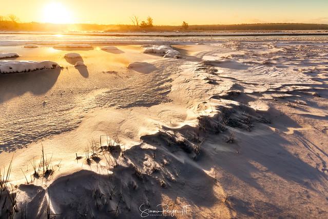 Windswept Marshland