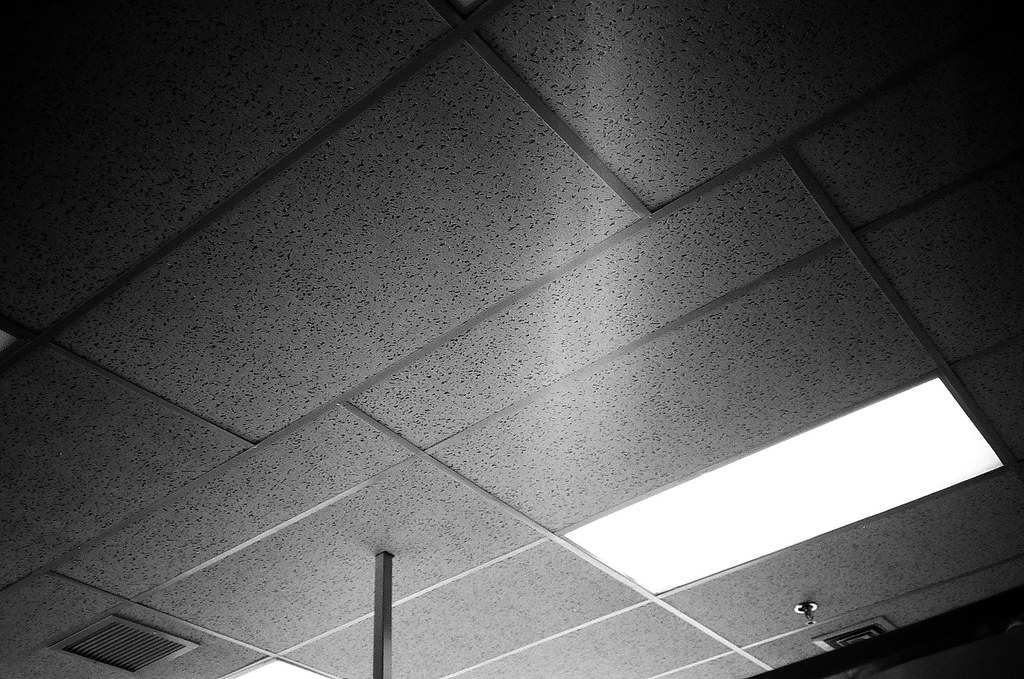Some Drop Ceiling Tiles In An Office Building Olympus Xa
