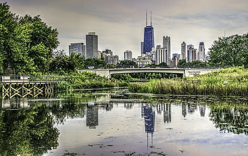 trees chicago nature reflections illinois bridges skylines ponds lincolnparkzoo boardwalks hcs tonemapping tonemap nikkor18300mm clichesaturday