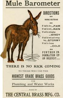 Mule Barometer   This