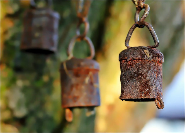 Our Daily Challenge Rust