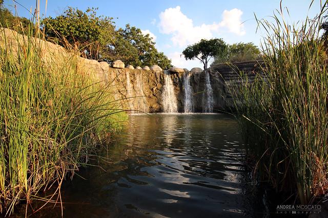 Pioneer Park Waterfalls - Dallas, Texas