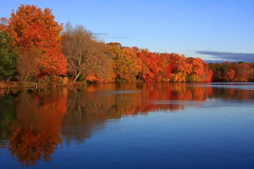 autumn lake newyork reflection fall nature water