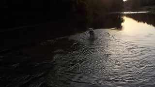 Electra in the river
