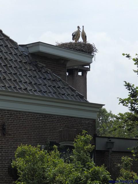 06-07-2013 Utrecht 37.5 Km (70)