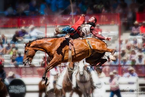 horse nikon cowboy rodeo cheyenne saddlebronc frontierdays everydaymiracles d700 johnchouse levitatinghorseseries