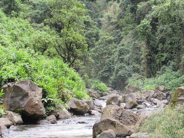 river Wona