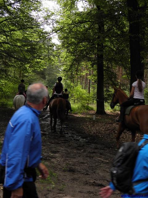 23-06-2012 dag 02 Amersfoort  (21)