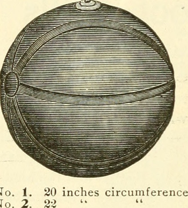 Image From Page 149 Of Quot Spalding S How To Play Foot Ball