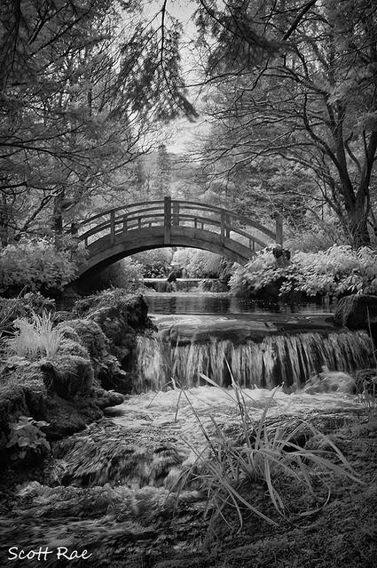 The bridge at Stobo Castle Japanese Water Gardens