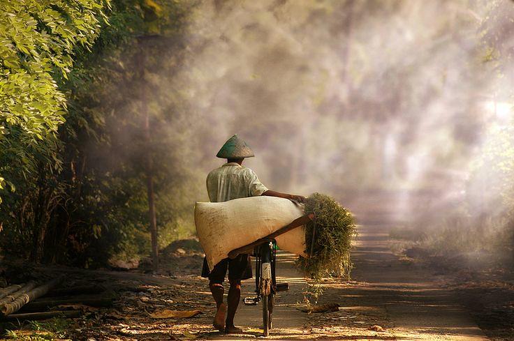 1-Pulang Ngarit by 3 Joko by Herman Damar, Village-life-In… | Flickr