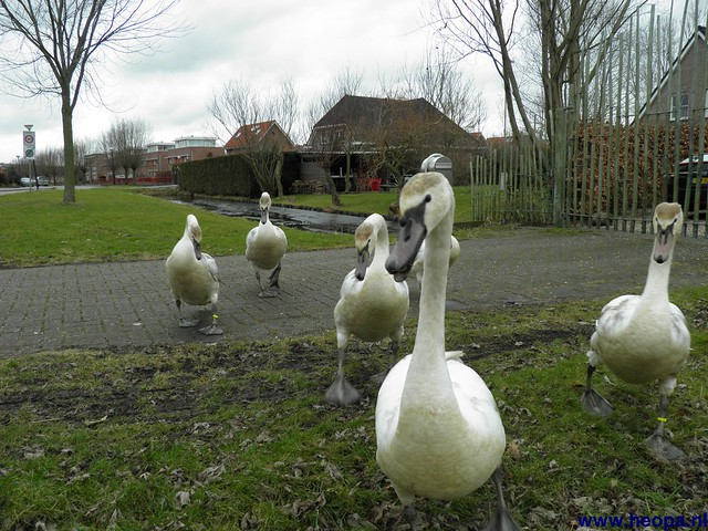 18-02-2012 Woerden (83)