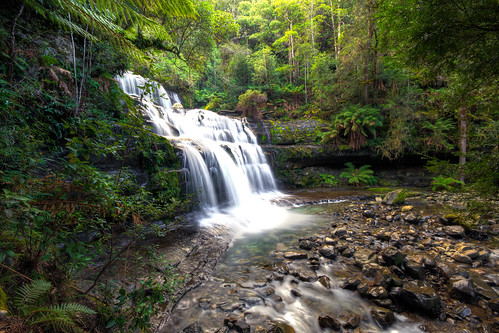Liffey Falls - Tasmania   by AdamSelwood