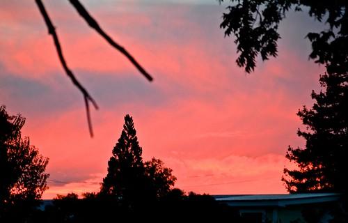 sunset laborday usausa janmikehopkins davestameysingswesternandcowboysongsatbellagracewinery
