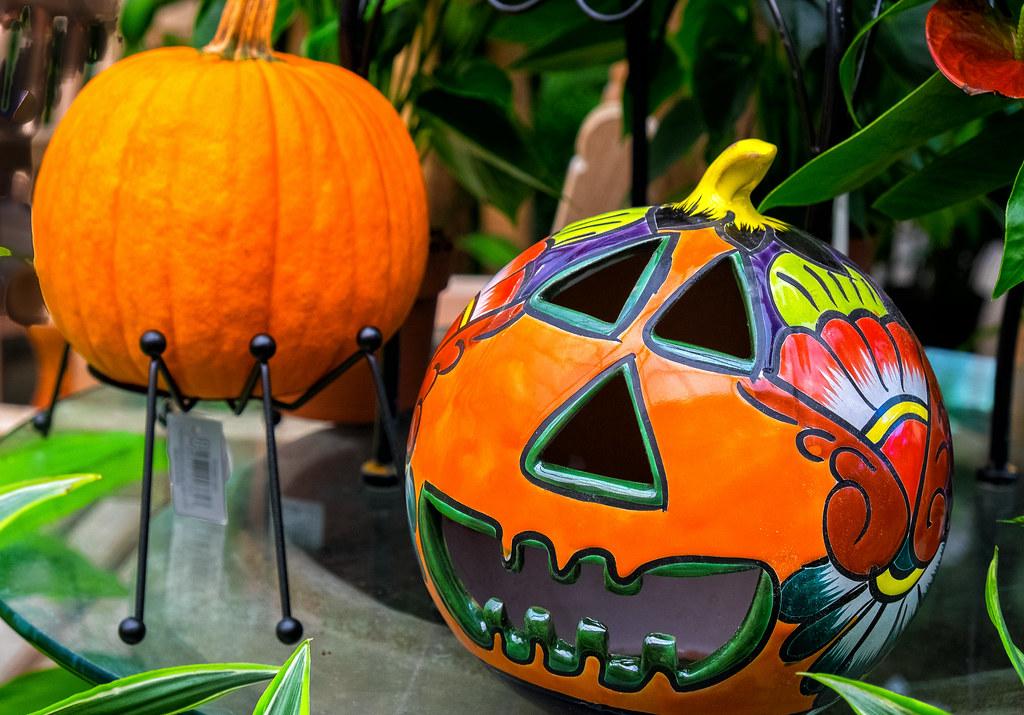 Pumpkin party merrifield garden center fairfax va - Merrifield garden center fairfax va ...