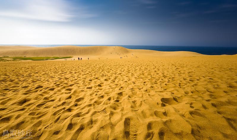 The Tottori Sand Dunes