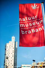 Nature museum Flag