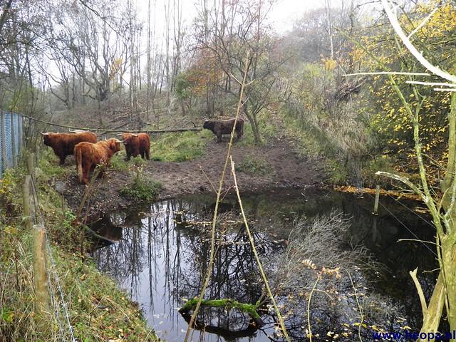 17-11-2012 Wassenaar 25.8 Km (34)