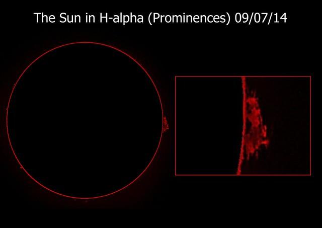Sun in H-alpha (Prominences) 09/07/14