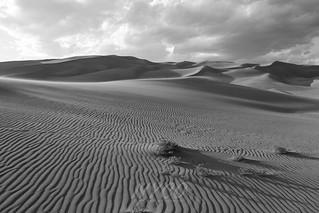 Schofield-Dunes-Medano-RH-16   by NYCO Media