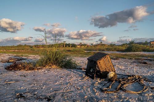 morning shells beach gulfofmexico sunrise morninglight florida sanibel sanibelisland gulfcoast lobstertrap sandpiperbeach marinedebris