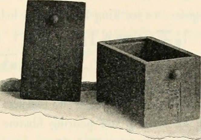 Image from page 56 of