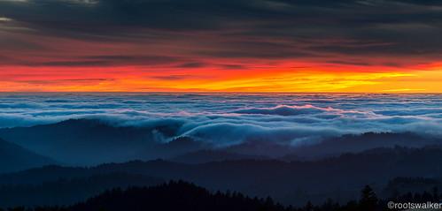 sunset fog skyline clouds monsoon burningsky openspace drama nikon70200mm longridgetrail escaype