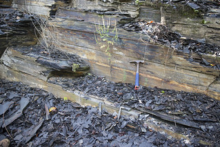Chattanooga Shale, Flynn Lick Impact Structure, Jackson County, Tennessee 2