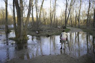 Flood walk 2011