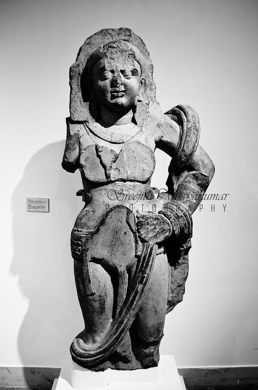 Nagini, National Museum, New Delhi