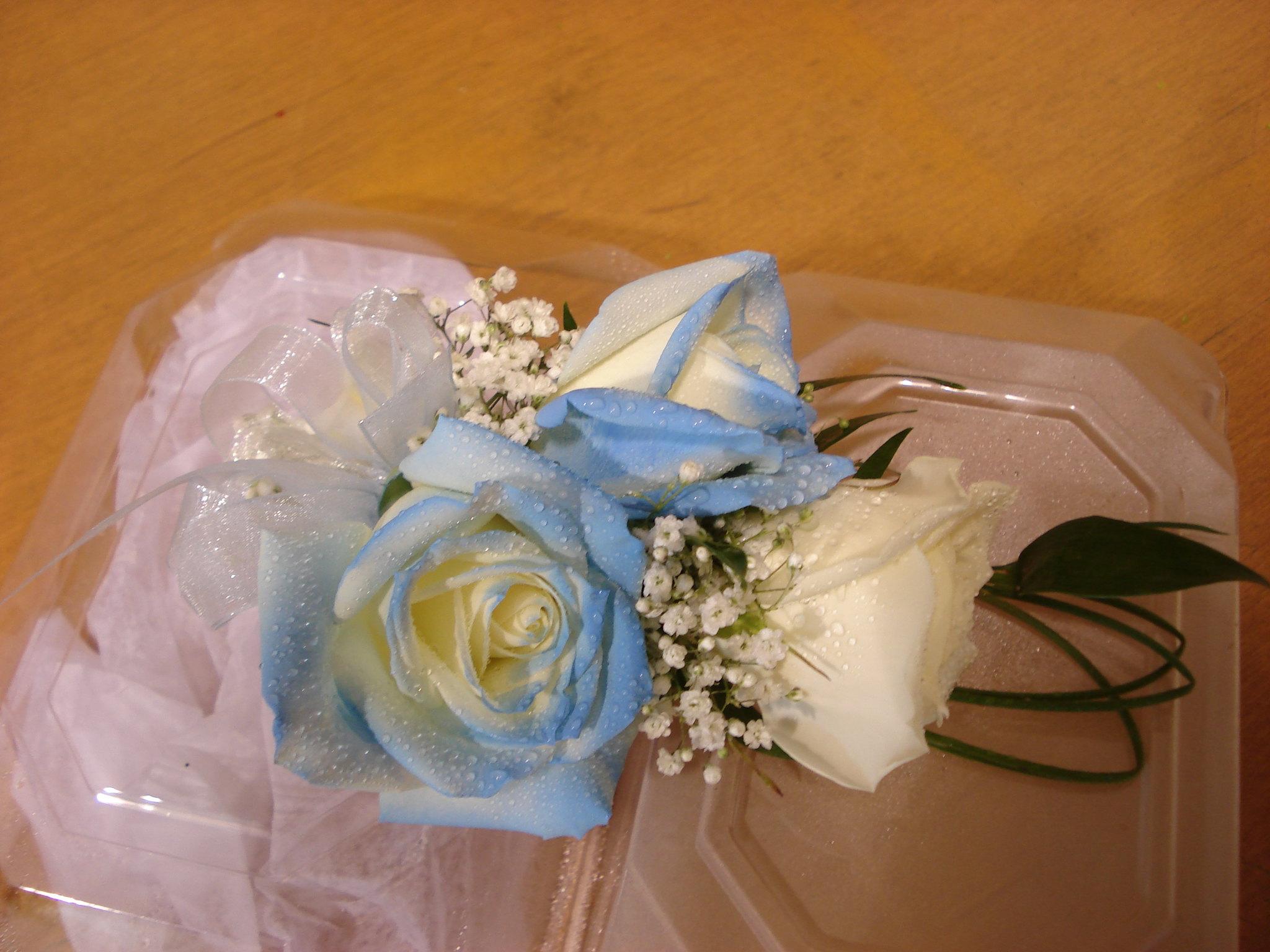 Farah Florist W-CB-6.      $15-20