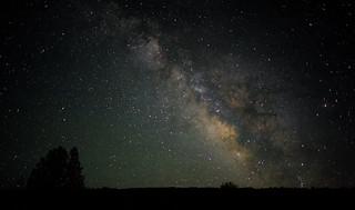 Starry night | by Pai Shih
