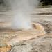 Pump Geyser (Geyser Hill Group, Upper Geyser Basin, Yellowstone Hotspot Volcano, nw Wyoming, USA)