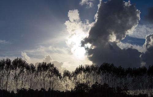light sky cloud portugal nature nikon 1855mm nikkor siluete oliveiradobairro d3100
