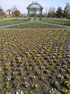 Blumengärten Hirschstätten | by NoDurians