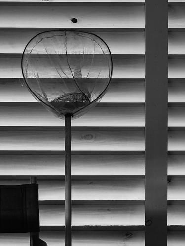 P6140259.jpg | by sbanawan
