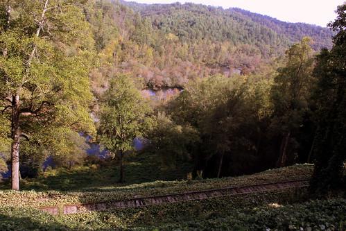 railroad train tn tennessee traintracks baldmountain ln polkcounty akn tennesseevalleyrailroad farner tvrm excursiontrain hiwaseeriver bmok bmok2 hiwaseeloop hookandeyeline atlantaknoxvilleandnorthernrailway hiwaseeriverrail