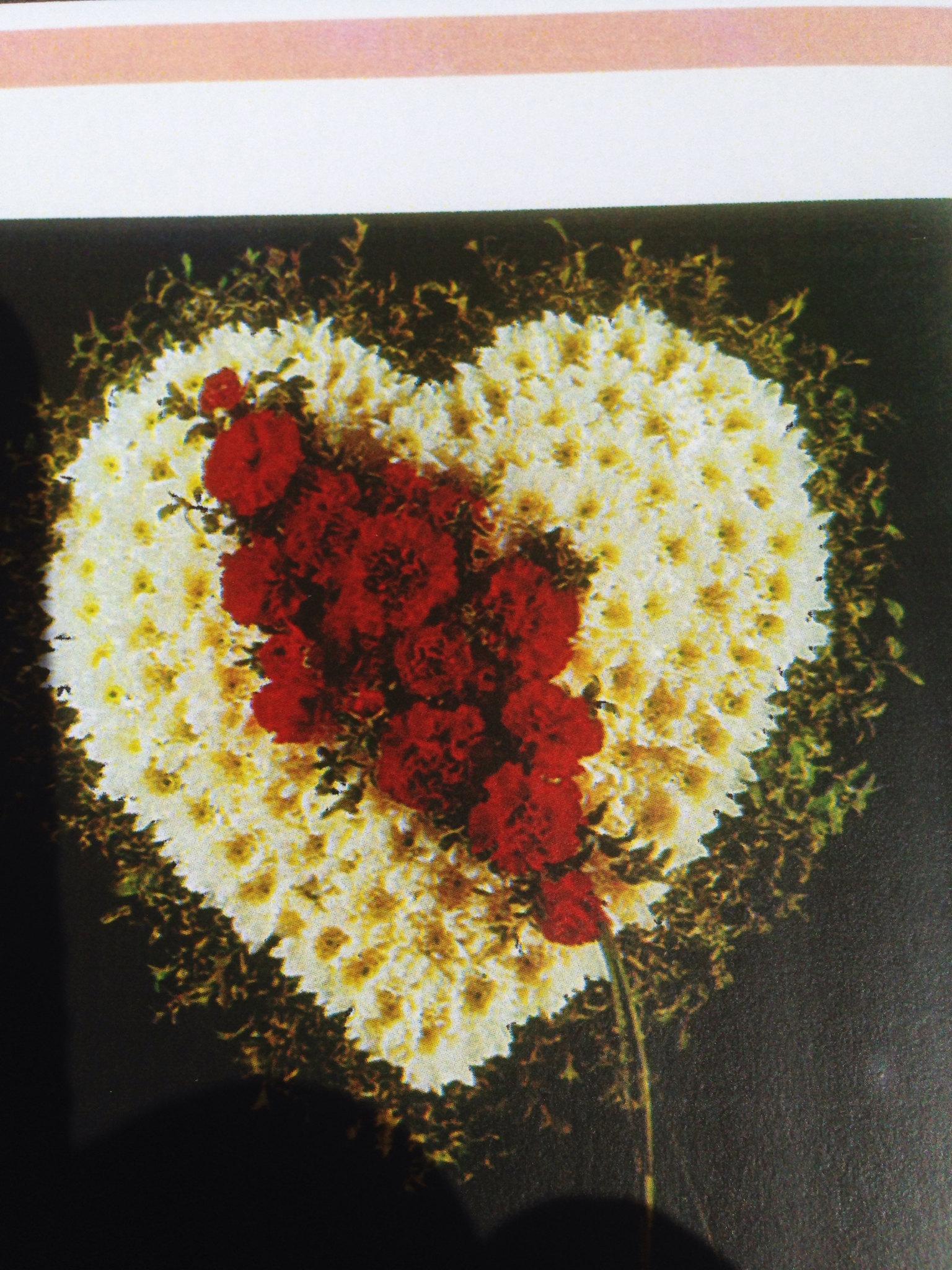 Farah florist. F-sp-2.        $280-350 Heart